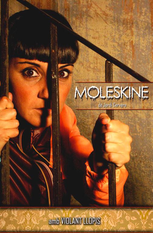 Cartell de l'obra Moleskine